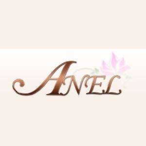 東北メンズエステ仙台・出張マッサージ ANEL -アネル-のバナー画像