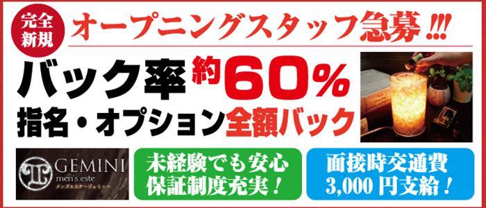 東京メンズエステ南新宿・代々木 メンズエステ「ジェミニ」 のバナー画像