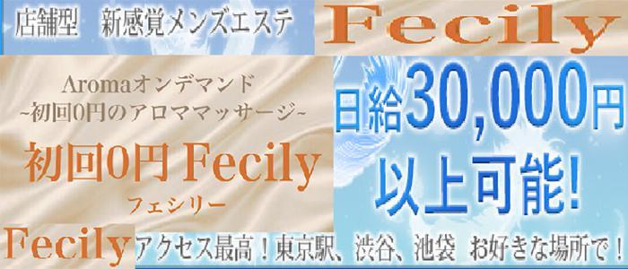 東京メンズエステFecily〜フェシリー 東京店のバナー画像