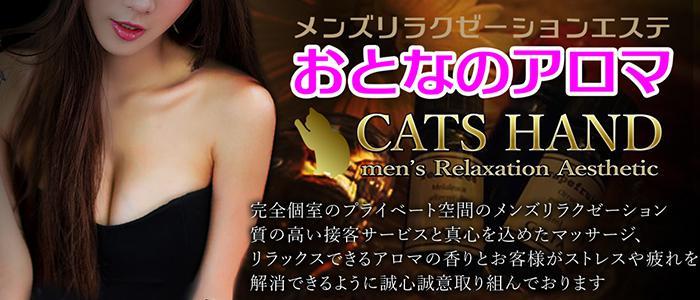 猫の手 Cat's Hand|メンズリラクゼーション