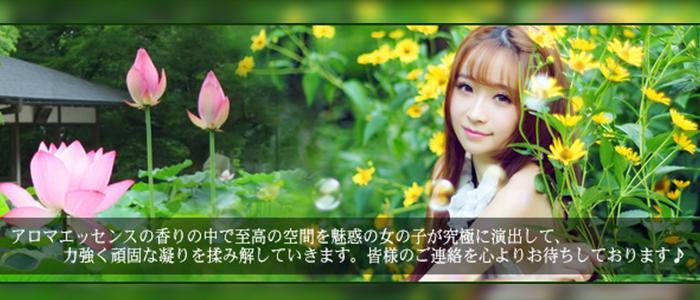 東京メンズエステ新富町駅 メンズリラクゼーション Lotus(ロータス)のバナー画像