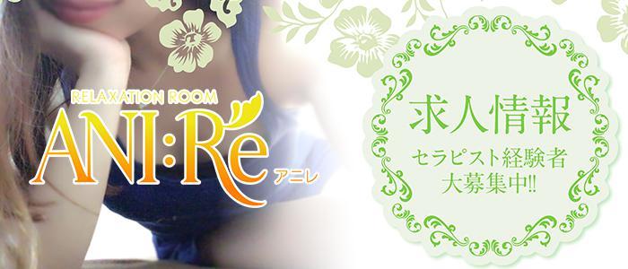 大阪メンズエステリラクゼーションルーム ANI:REのバナー画像