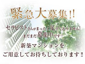 大阪メンズエステ堺筋本町 日本橋 長堀橋のメンズエステ マリッジブルーのサブ画像2