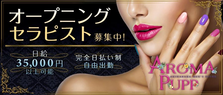 東京メンズエステAROMA PUPPのバナー画像