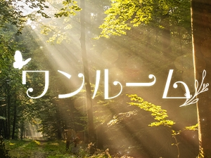 東京メンズエステTokyo fairy landのサブ画像2